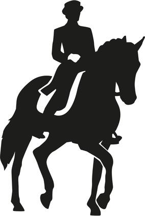 Pferderecht Köln