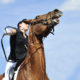 Pferderrecht